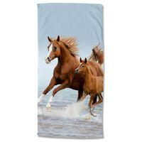 Good Morning Ręcznik plażowy FREE, 75x150 cm, brązowo-niebieski