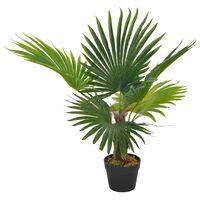 vidaXL Sztuczna palma z doniczką, zielony, 70 cm