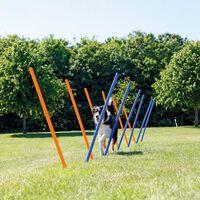TRIXIE Słupki do Slalomu agility,12 szt. 115 cm, plastik, 3206