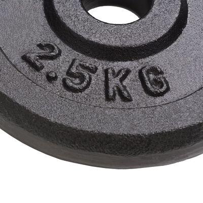 vidaXL Obciążniki żeliwne, 2 sztuki, 30 kg